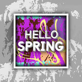 Spring Greeting. Stock Images