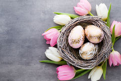 Spring greeting card. Easter eggs in the nest. Spring flowers tu Royalty Free Stock Photos