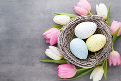 Spring greeting card. Easter eggs in the nest. Spring flowers tu Stock Photography