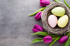 Spring greeting card. Easter eggs in the nest. Spring flowers tu. Lips stock image