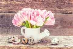 Easter eggs pink fresh tulip flowers bouquet and small toy watering can vase on rustic shabby wooden background royalty free stock photo