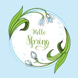 Spring greeting card with snowdrops. Royalty Free Stock Image