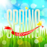 Spring greeting Royalty Free Stock Photos