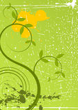 Spring grunge floral background. Beatyful shapes Stock Photography