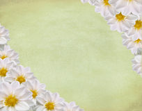 Spring grungy card Royalty Free Stock Photography