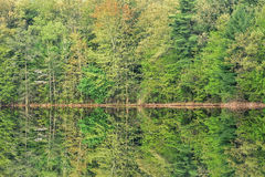 Free Spring, Hall Lake Reflections Stock Photography - 54036112