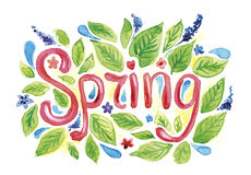 Spring. Hand drawn watercolor word `Spring` with green leaves and flowers vector illustration