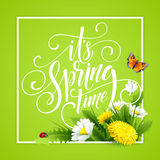 Spring Hand Lettering on background with flowers. Vector illustration. EPS10 Royalty Free Illustration