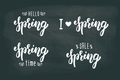 Spring hand lettering set. Summer typographic and calligraphic set. Spring logos and emblems. White ink. Vector Stock Photography