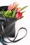 Spring in a handbag Stock Photo