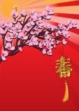 Spring hang cherry effect design royalty free illustration
