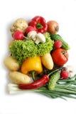 Spring harvest. Vegetables. Still life Royalty Free Stock Photos
