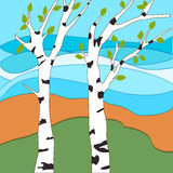 Spring has come. White birch trees with young leaves, awakening Royalty Free Stock Images