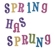 Spring Has Sprung!. Spring has sprung isolated on white with a clipping path Stock Images