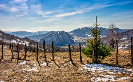 Spring has sprung in rural area. Wooden fence on agricultural field, yellow weathered grass covered with snow. snowy peaks of mountain ridge in the distance Royalty Free Stock Images