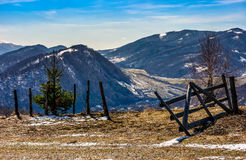 Spring has sprung in rural area. Wooden fence and spruce tree on agricultural field with yellow weathered grass. village in the distance at the mountain ridge Royalty Free Stock Photography
