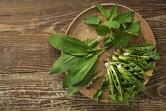 Spring healthy food with wild garlic dandelion and nettle leaves stock images