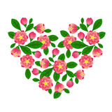 Spring heart. Spring floral hearts with white background Royalty Free Stock Photos