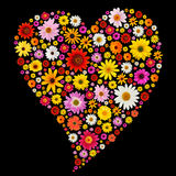 Spring heart. Valentine heart made from colorful spring daisies stock photography