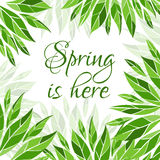 Spring is here card Stock Images