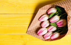 Spring is here. Happy birthday. Bouquet fresh pink tulips on yellow table background top view. Spring holiday greetings. Spring flowers for mothers day. Spring royalty free stock photos