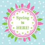 Spring is here theme Royalty Free Stock Photo