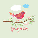 Spring is Here Stock Images