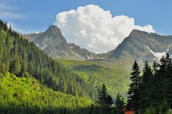 Spring in the high mountains Royalty Free Stock Images