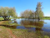 Spring high water Royalty Free Stock Photo