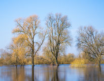 Spring high water Royalty Free Stock Images
