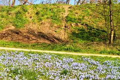 Spring on the hill Royalty Free Stock Photography
