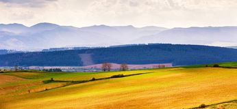 Spring hills fields and meadow landscape. Tatras mountains stock photo