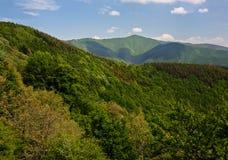 Spring hilly landscape. Tuscany, Italy Royalty Free Stock Photo