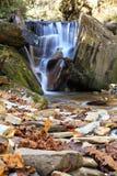 Spring,Himalaya Mountains,Nepal. royalty free stock image