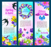 Spring holidays greeting vector flowers banners. Hello spring greeting design with springtime flowers. Vector banners of flower wreath with blooming crocuses Royalty Free Stock Photos