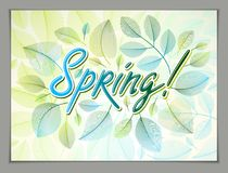 Spring horizontal banner design, vector green and fresh leaves f Royalty Free Stock Photography