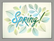Spring horizontal banner design, vector green and fresh leaves f Stock Photos