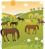 Spring horses Royalty Free Stock Photos