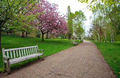 Spring in Hyde Park, London. A bench and walking path in Hyde Park in London, UK Royalty Free Stock Images