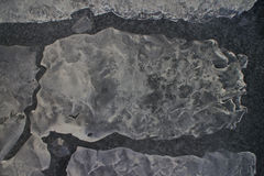 Spring ice melts quickly in bright sunlight Stock Image