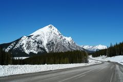 Spring icefield parkway Stock Image