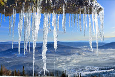 Spring icicles in the mountains Royalty Free Stock Image