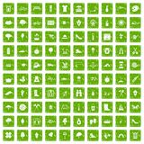 100 spring icons set grunge green Royalty Free Stock Images