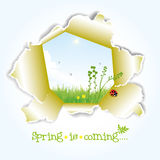 Spring illustration Royalty Free Stock Images