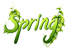 Spring. Illustration of a special font of spring Stock Image