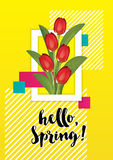 Spring illustration with tulips inside it Royalty Free Stock Photo