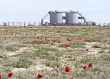 Spring. Industrial area. Fuel Storage Tank. Stock Photo
