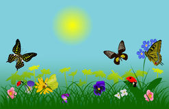 Spring insects and flowers Royalty Free Stock Photo