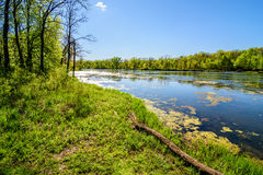 Spring in Iowa. Captured this beautiful spring photo in Waterloo, Iowa stock images