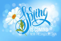 Free Spring Is Coming Royalty Free Stock Image - 86569646